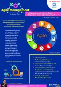 Agile Management for Virtual Team
