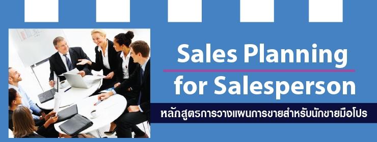Sales Planning for Salesperson