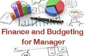 Finance and Budgeting for Manager