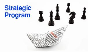 Strategic Program ©